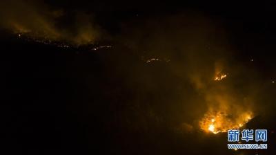 四川西昌突发森林火灾造成19人遇难
