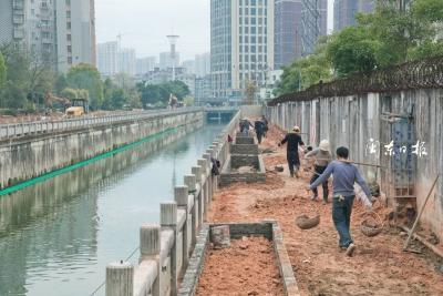 市区南大塘滨河绿地整治,为市民再添休闲新去处