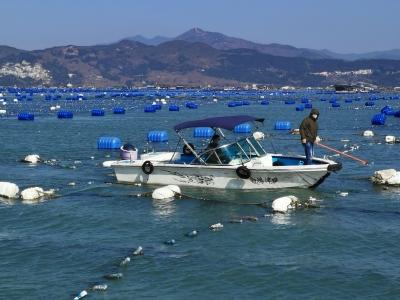 霞浦:全力推进海上养殖综合整治