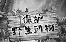 """省人大常委会副主任雷春美带队来我市开展野生动物保护""""一法一办法""""执法检查"""