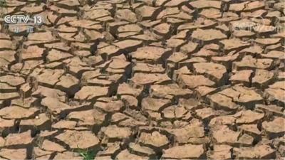 云南遭遇近10年来最严重干旱 超过147万人饮水困难