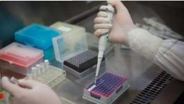新加坡一实验室试剂盒出现问题 33人被误诊感染新冠肺炎