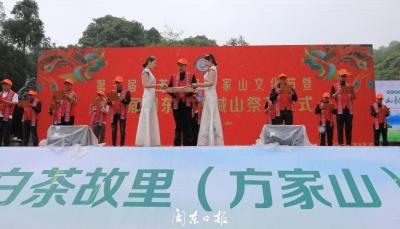"""""""喊山祭茶喽!""""第三届白茶故里(方家山)文化节开幕,""""新宁德""""直播进行中……"""