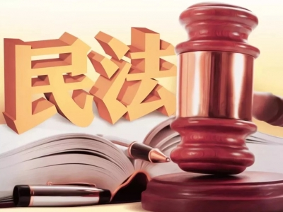 为新时代中国特色社会主义事业筑牢民事法律保障——党和国家领导同志审议讨论民法典草案