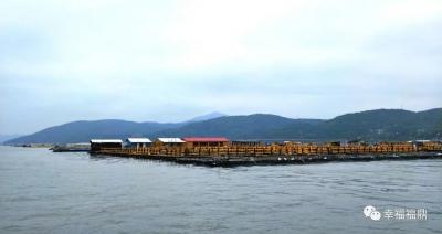 漂浮在沙埕湾海上的民宿,串联起最美的风景线