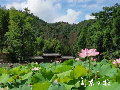 福鼎叠石:夏季赏花避暑好去处