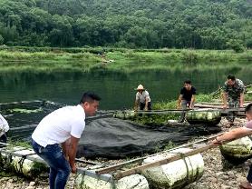 霞浦牙城镇:开展杨家溪渔排养殖综合整治清河退养工作
