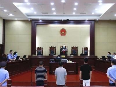 最高23年 蕉城公开宣判一起黑社会性质组织犯罪案