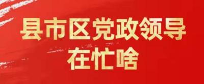 """【县市区党政领导在忙啥】黄桂诚调研推动农贸市场及""""菜篮子""""工程建设"""
