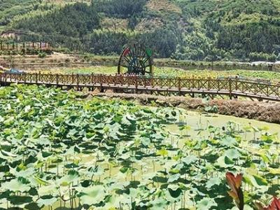第二批全国乡村旅游重点村名单公示 古田桃溪村和屏南龙潭村上榜