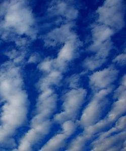 【知乎者也】郑振木:云在天上飞