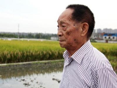袁隆平:丰收不是浪费的理由,必须时刻绷紧粮食安全这根弦