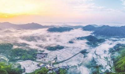福建日报   福安:绿水青山释放生态红利