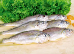 霞浦一水产摊散装称重大黄鱼抽检样品不合格