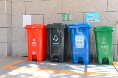 扔掉的塑料瓶被回收后可能做成了衣服?分类后的垃圾都去哪儿了?