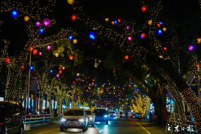 美翻了!八一五中路的彩灯亮起来了,流光溢彩、灿若星河!