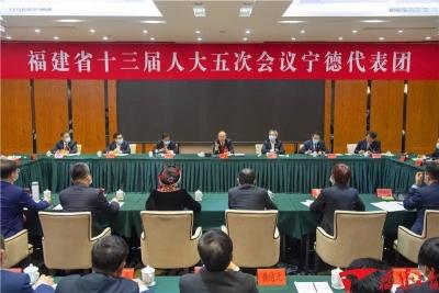 快讯丨尹力参加省十三届人大五次会议宁德代表团审议