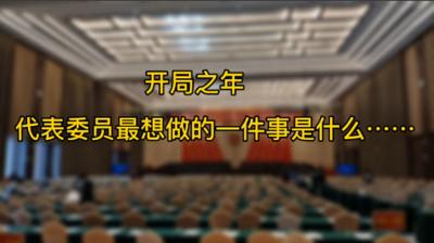 两会访谈丨宁视频:开局之年,代表委员最想做的事是什么……
