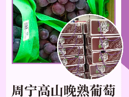 """福安杨梅、屏南李、周宁高山晚熟葡萄……将上全国""""名特优新""""!"""