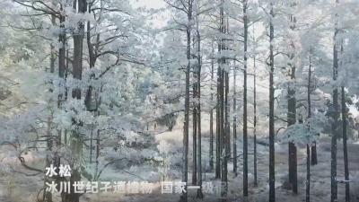 新华社客户端丨屏南天然水松林:皑皑白雪 宛如仙境