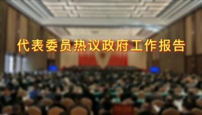 两会访谈 | 宁视频:热议政府工作报告,展示金名片