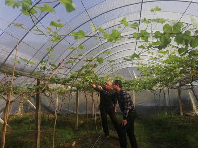 新春走基层 | 钟勇法:把科技种子播撒在田间地头