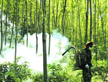 我市多举措做好春节前森林防灭火工作